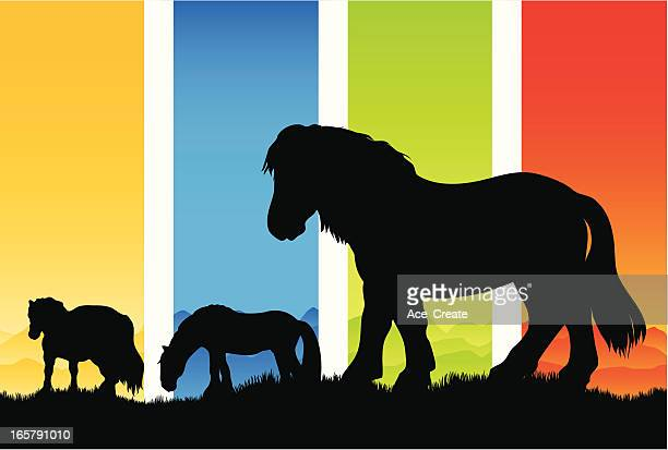 the four seasons pony silhouettes - pony stock illustrations, clip art, cartoons, & icons