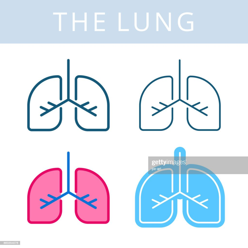 The internals icons. Lung and respiratory system vector outline symbols.