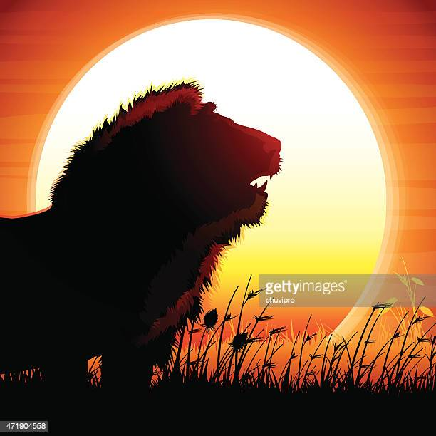 the lion silhouette safari against hot sun - roaring stock illustrations