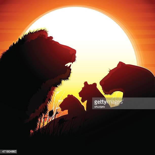 The Lion's pride silhouettes safari against hot sun