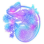 The outline vector illustration of a rainbow chameleon isolated on