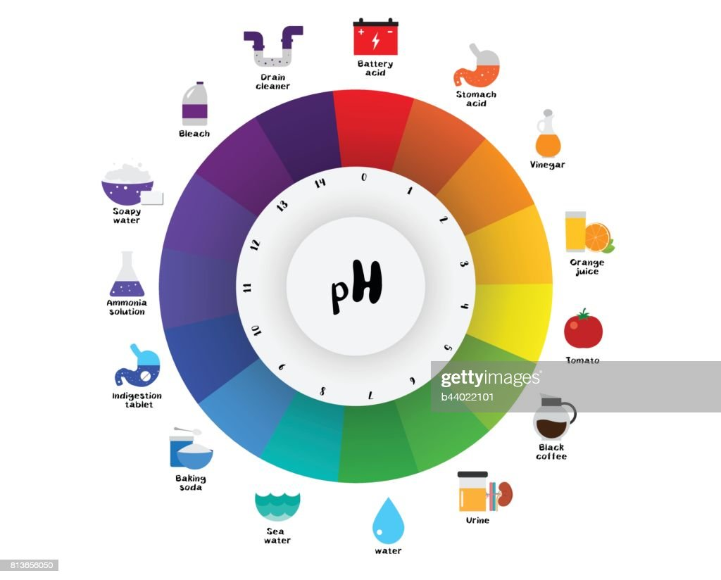The ph scale universal indicator ph color chart diagram vector art the ph scale universal indicator ph color chart diagram vector art nvjuhfo Choice Image