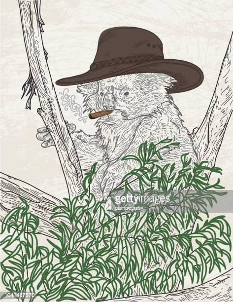 the rancher - tree bark stock illustrations, clip art, cartoons, & icons