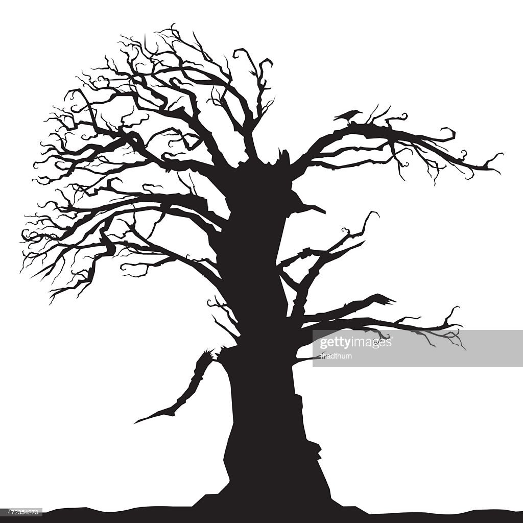The silhouette of a tall tree illustrated in black and white