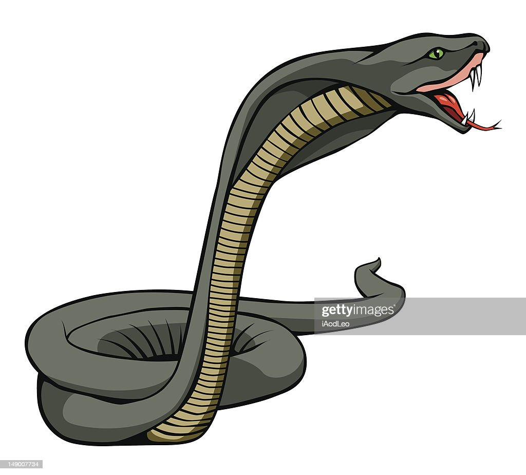 The snake vector design on white background
