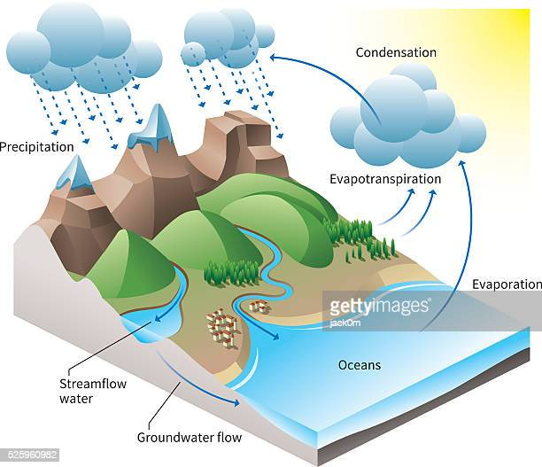 the water cycle - water cycle stock illustrations, clip art, cartoons, & icons