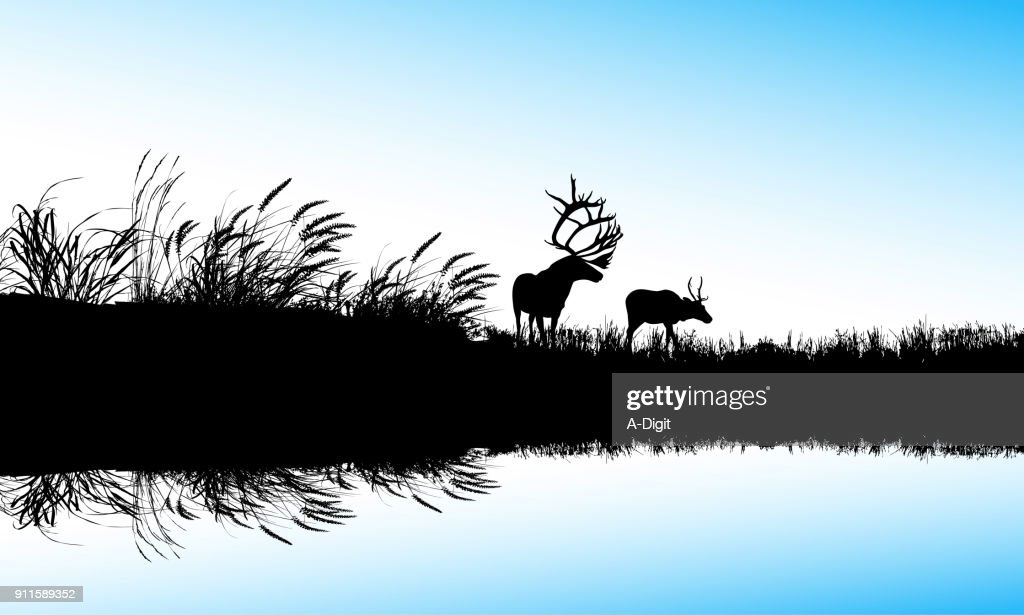 The Waters Edge : stock illustration