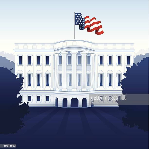 stockillustraties, clipart, cartoons en iconen met the white house - presidentskandidaat