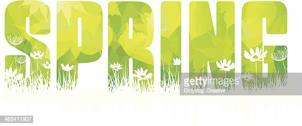 The word Spring made with fresh green leaves and flowers