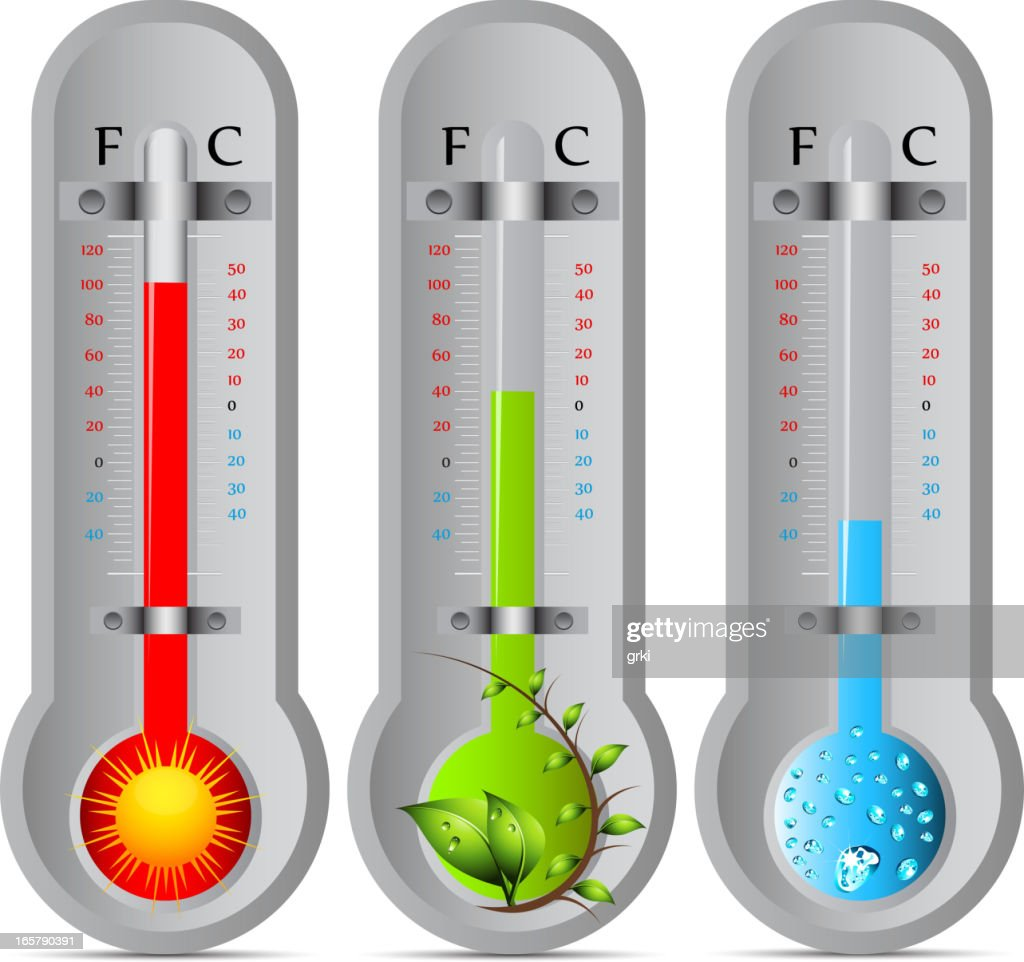 Thermometer : Vector Art