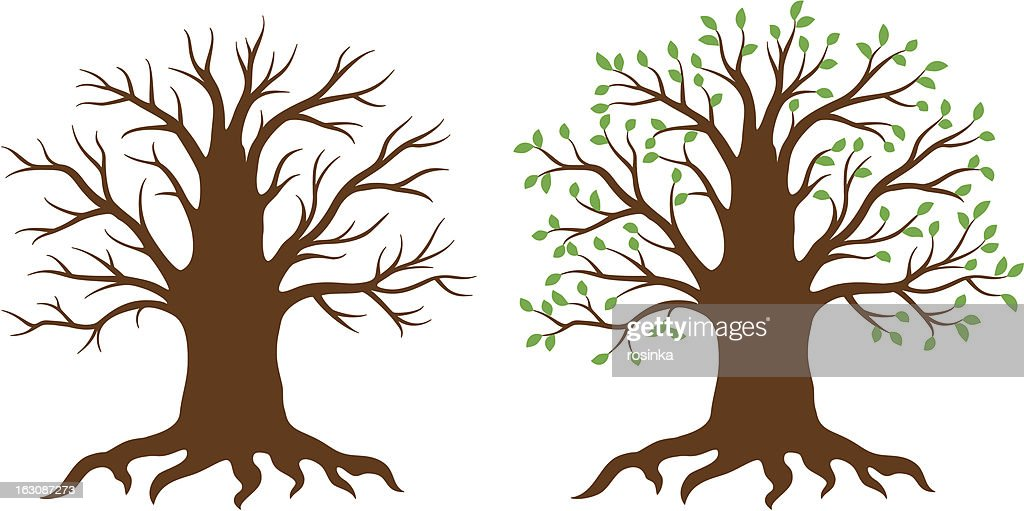 Thick vector tree