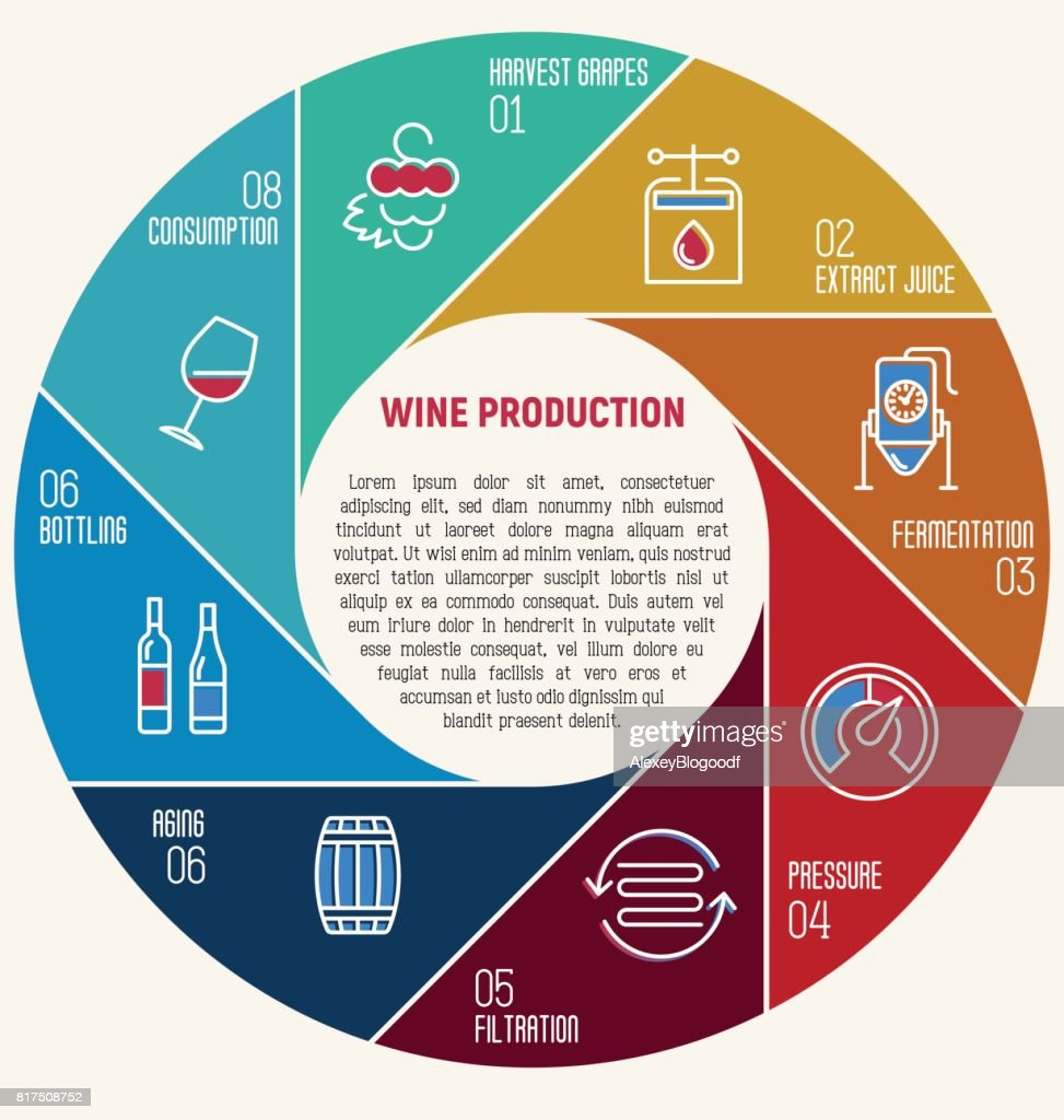Thin line infographic of wine fermentation circle diagram with eight circle diagram with eight equal parts that shows how wine is made and created winemaker tool set production of alcoholic beverages vector illustration ccuart Image collections