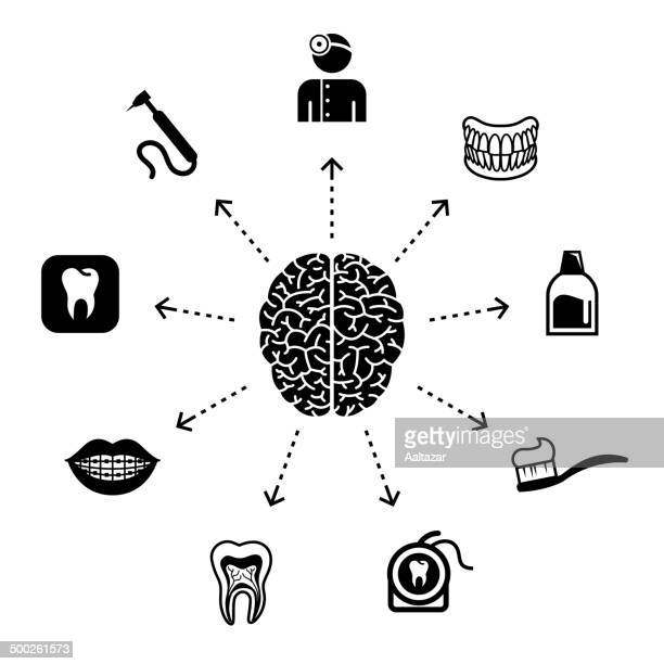 thinking about dental care - cerebral hemisphere stock illustrations, clip art, cartoons, & icons