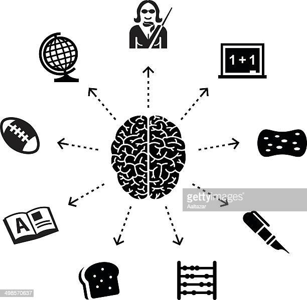 thinking about school - cerebral hemisphere stock illustrations, clip art, cartoons, & icons