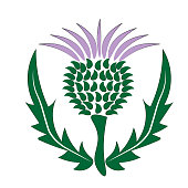 thistle Scotland symbol and emblem