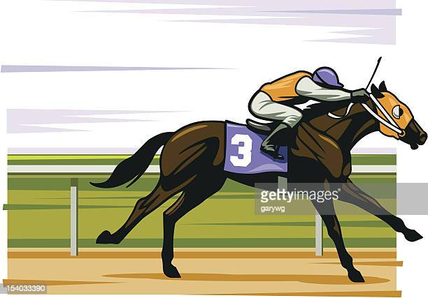 thoroughbred - horse family stock illustrations, clip art, cartoons, & icons