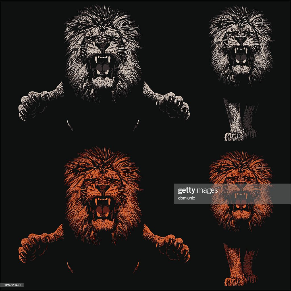Threatening Lions - Light and Shadow