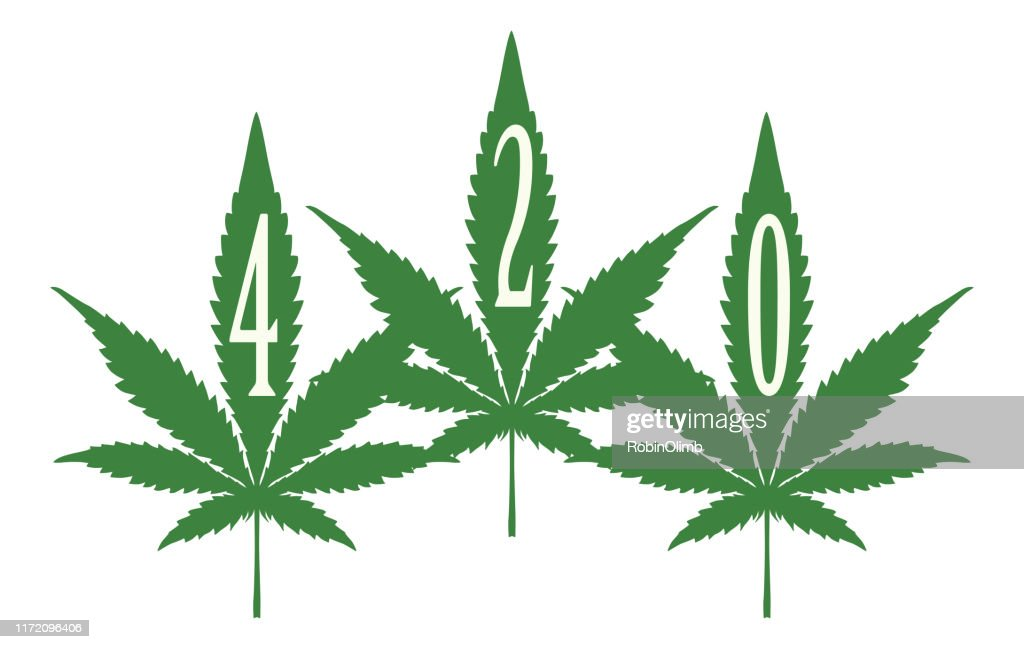 Three 420 Marijuana Leaves High Res Vector Graphic Getty Images