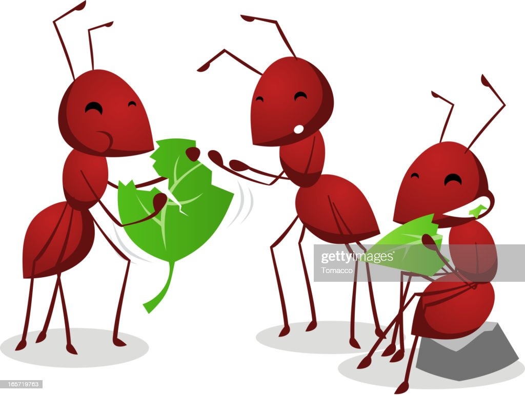 Three Ants eating green leafs