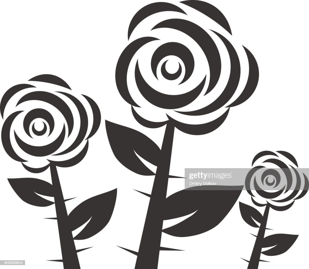 Three black and white roses, roses with thorns and leaves.