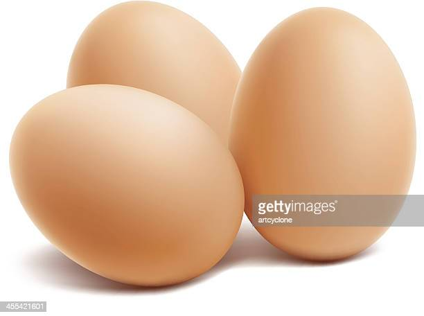 three brown eggs on a white background - calcium stock illustrations, clip art, cartoons, & icons