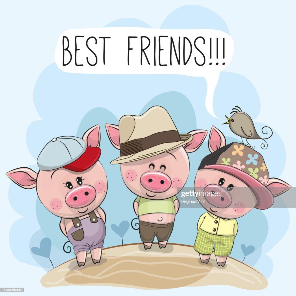 Three cute cartoon pigs and a bird