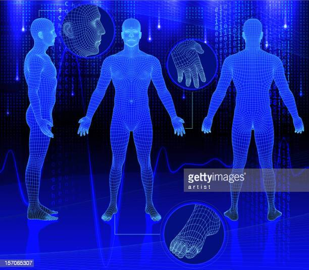 three dimensional bodies on abstract background - the human body stock illustrations
