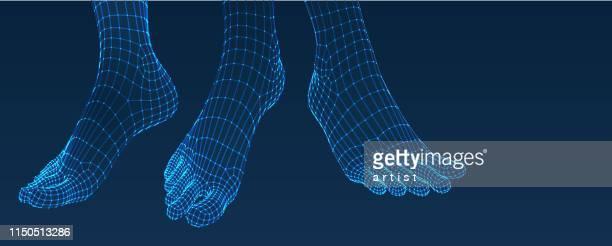 three dimensional feet. set. ware mesh from 3d app. - foot stock illustrations