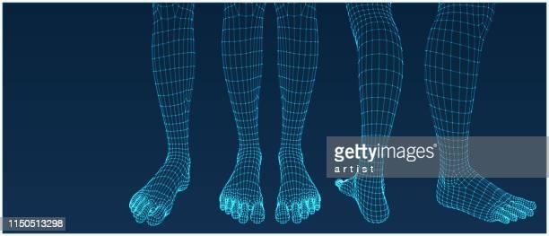 illustrazioni stock, clip art, cartoni animati e icone di tendenza di piedi tridimensionali. impostare. rete ware dall'app 3d. - modalità wire frame
