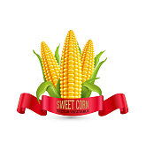 Three ear of corn with leaves and red ribbon