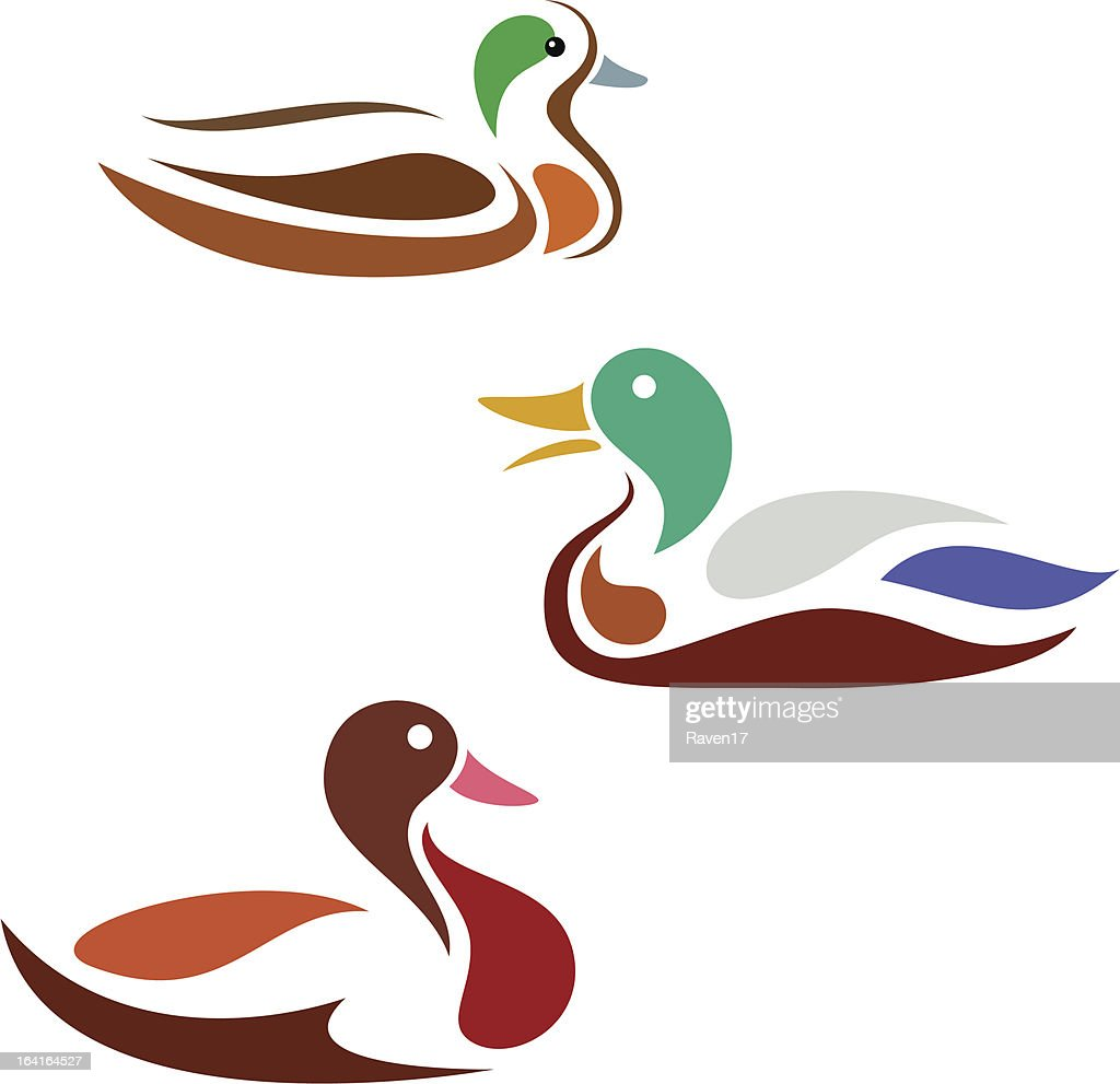 Three illustrations of ducks on white