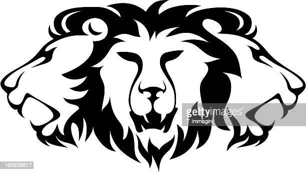 ilustrações, clipart, desenhos animados e ícones de três leão - animal mane
