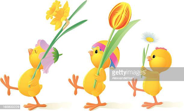 Three proudly marching baby chicks with flowers