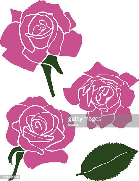 three roses with rose leaf - rose petals stock illustrations, clip art, cartoons, & icons