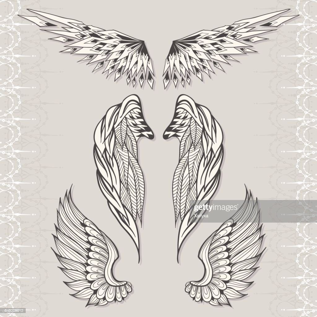 Three sketches of wings