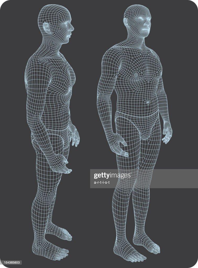 Three-dimensional human body