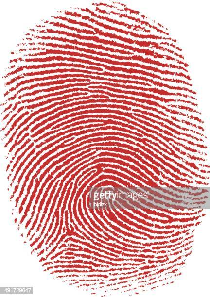 thumb fingerprint - tracing stock illustrations