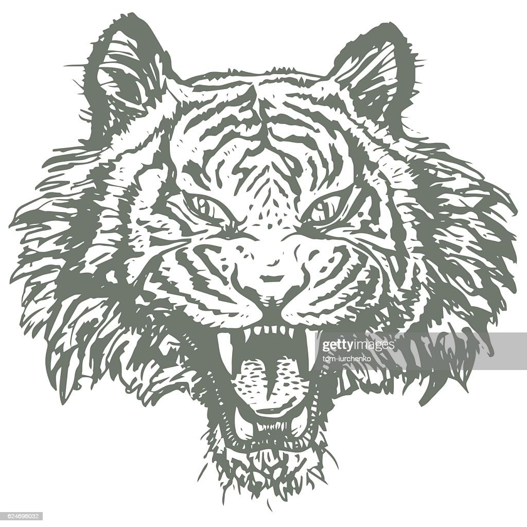 Tiger Face Hand Drawn Logo. Sketch Style. Nature and Animals.