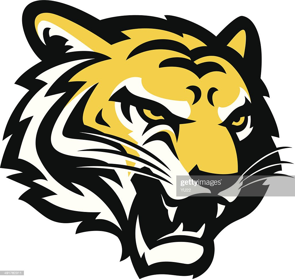 tigers vector art and graphics getty images rh gettyimages com tiger stripes vector art tiger vector free