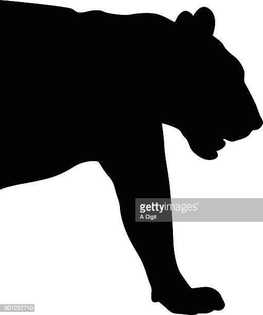 tiger icon - shank stock illustrations, clip art, cartoons, & icons