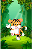 Tiger in the clear and green forest
