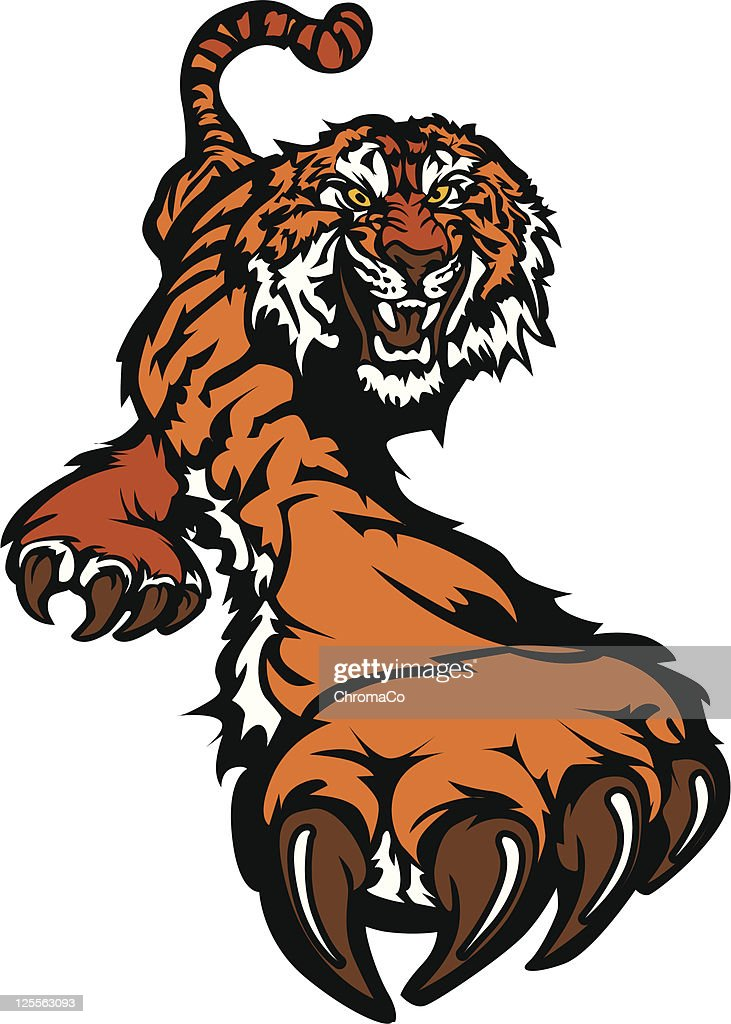 Tiger Mascot Body Prowling Vector Graphic