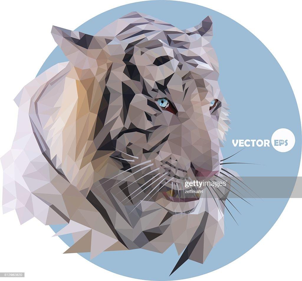 Tiger, portrait on a blue background
