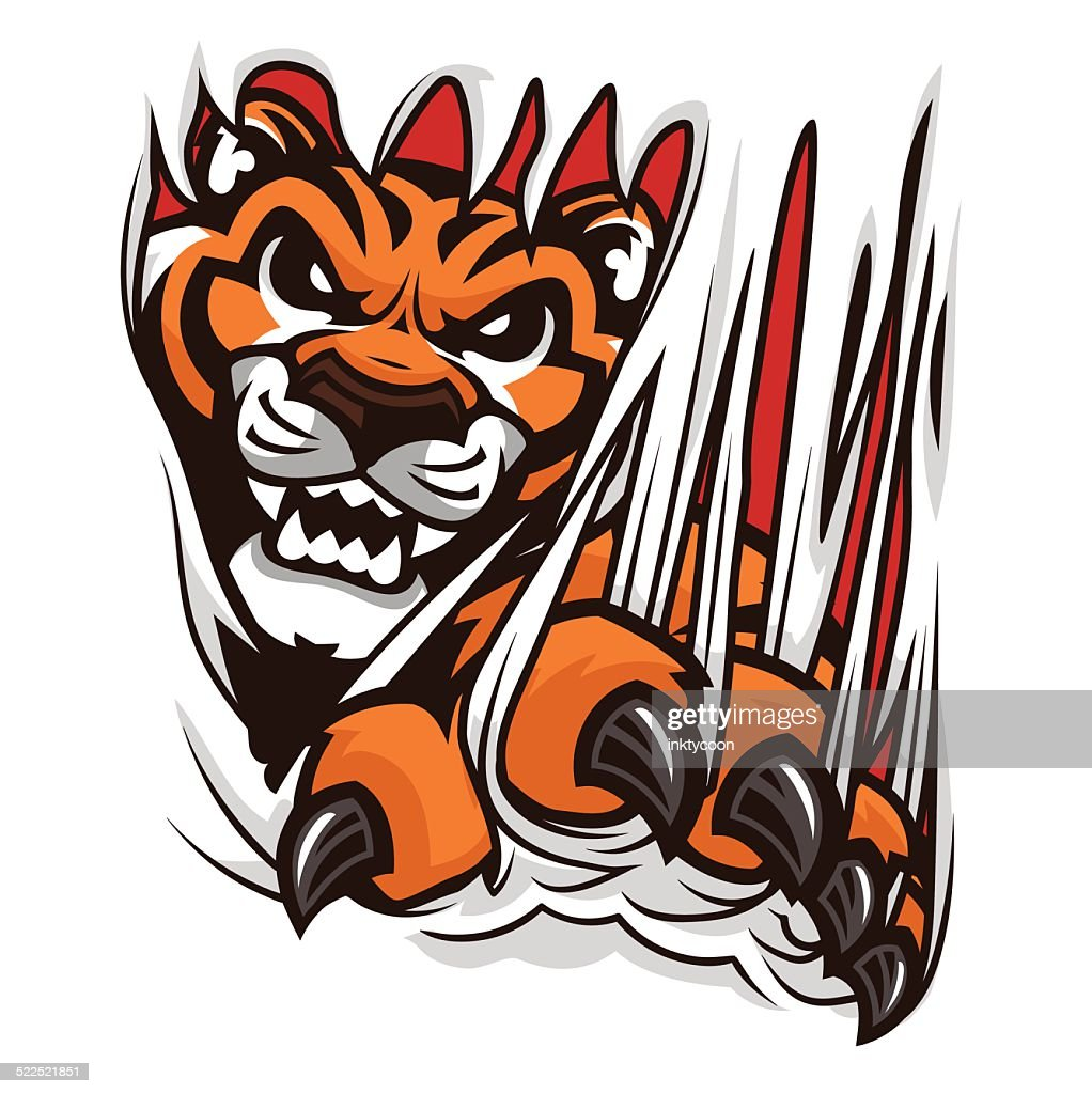 Tiger Ripping Through A Shirt Or Material Vector Art ...