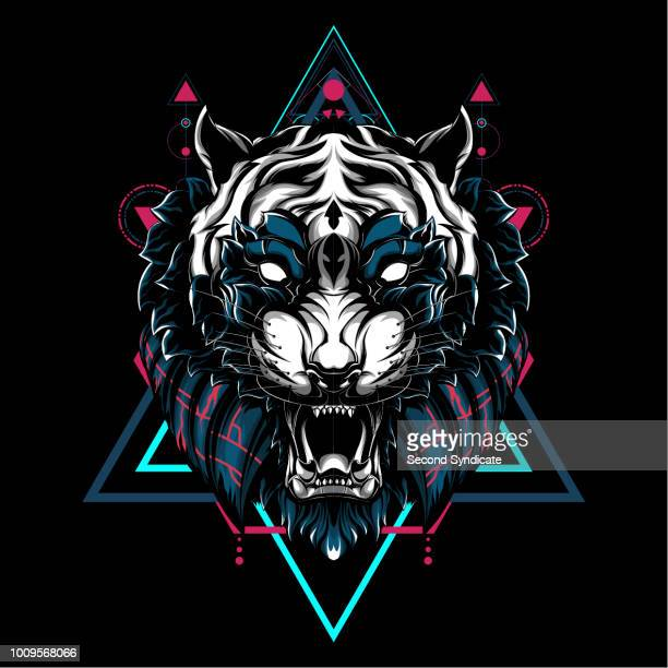tiger sacred geometry - aggression stock illustrations