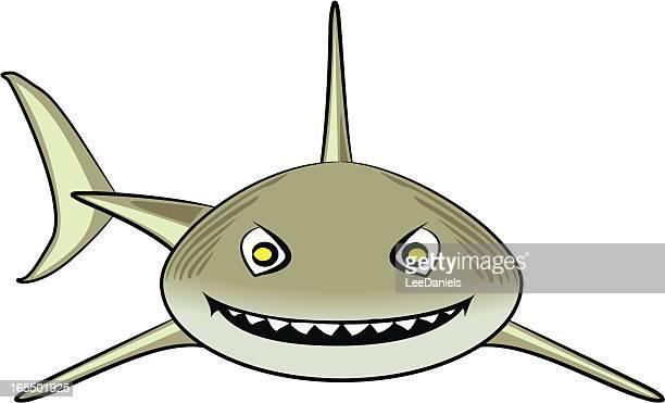 Illustrations Et Dessins Animes De Requin Tigre Getty Images