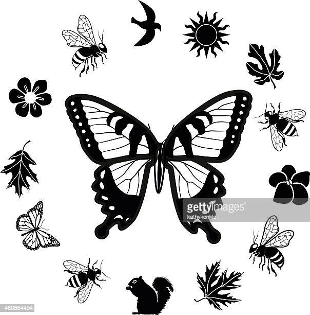 tiger swallowtail butterfly surrounded by circle nature border