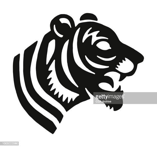ilustraciones, imágenes clip art, dibujos animados e iconos de stock de tigre - tigre