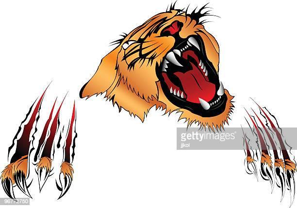 tiger - claw stock illustrations, clip art, cartoons, & icons