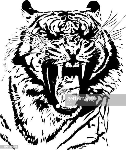 stockillustraties, clipart, cartoons en iconen met tiger geeuw in zwarte lijnen - schoonheid in de natuur